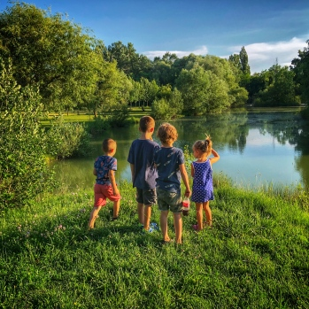 Beau, Willow and friends at the pond