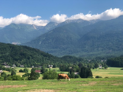 Beautiful vista with the Julian Alps in the background