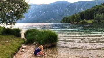 The shores of Lake Bohinj