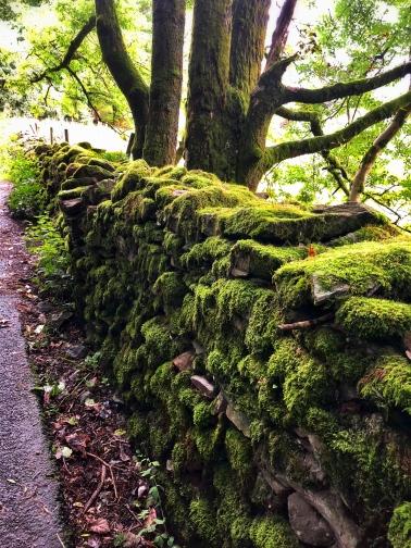 Stone walls galore!