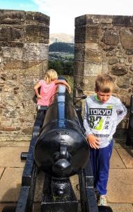 So many cannons!
